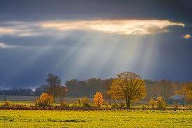 sunshine rays